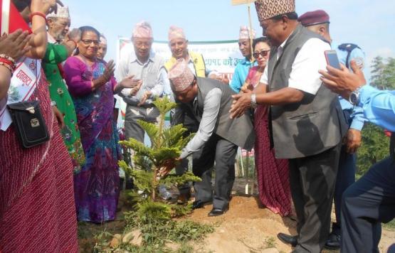 विश्व वातावरण दिवस सन् २०१८ को अवसरमा संचालित वृक्षारोपण कार्यक्रममा वृक्षारोपण गर्नु हदै धनकुटा नगर कार्यपालिकाका नगर प्रमूख श्री चिन्तन तामाङ