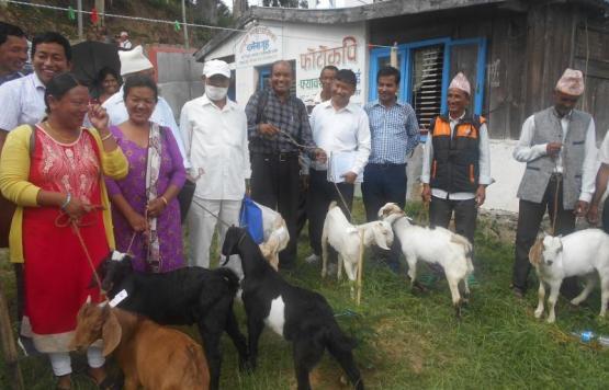 कृषक समूहमा कृषि मेसिनरी मिनी टिलर तथा उन्नत जातको बिउ बोका हस्तान्तरण कार्यक्रम
